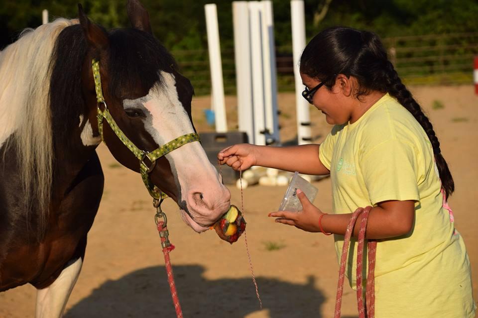 Summer Horse Camp Kids Camp Raintree Equestrian Center